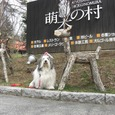 71)【3日目】萌木の村へ